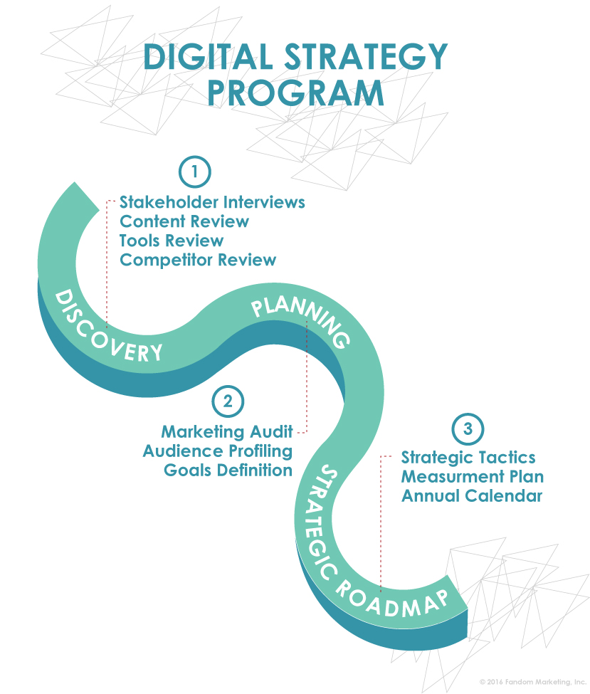 Digital Strategy Program